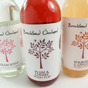 Breckland Orchard 'Posh pop' bottled drinks (275ml)